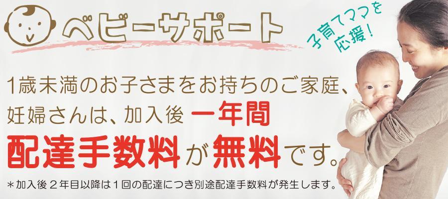 コープ自然派しこく(徳島)の子育てサポート