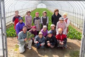 福井県民生活協同組合の商品画像